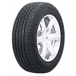 Nexen Roadian HTX RH5 DOT17